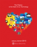 SGI Annual Report 2013